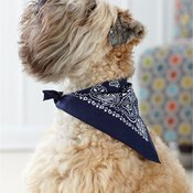 USA-Made Doggie Bandana