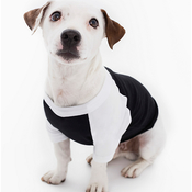 Dog Poly/Cotton Three-Quarter Sleeve Raglan Tee